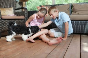 kids-with-dog