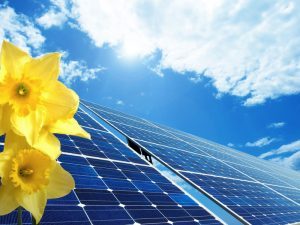 solar-panels-with-flowers